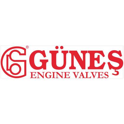 GUNES üreticisi resmi